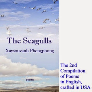 The Seagulls - 2nd compilation