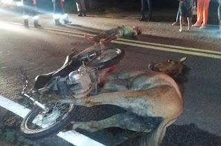 Colisão com animal mata irmão de prefeita, na Paraíba