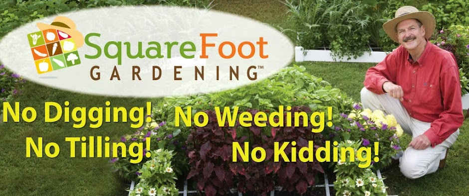 Square Foot Gardener