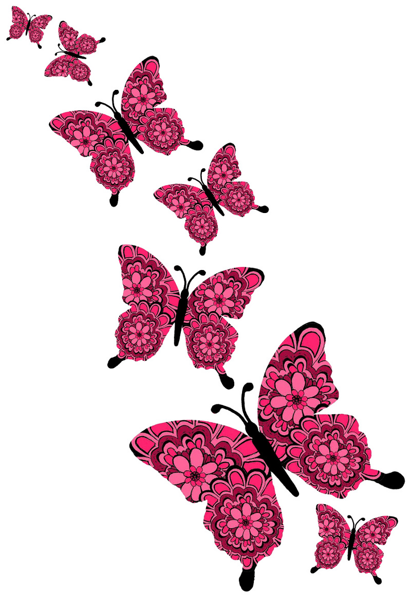 Displaying 15> Images For - Mariposas Rosadas
