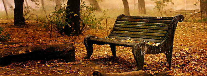 Old bench facebook cover