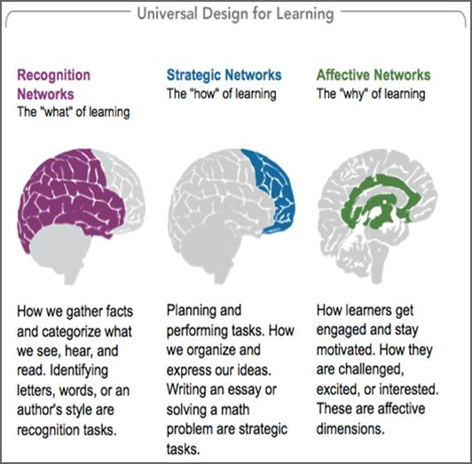 Teaching Strategies Universal Design For Learning Guidelines