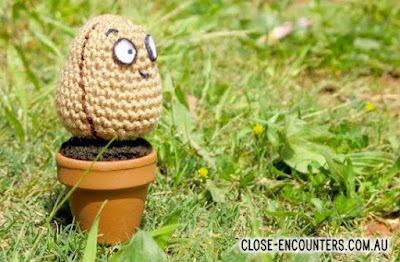 amigurumi crochet wall nut from Plants vs Zombies