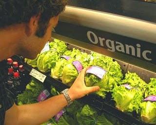 manfaat mengkonsumsi sayuran organik