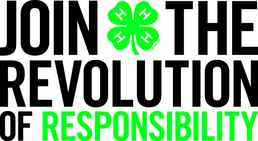 the responsibility revolution Five percent: that's all it takes to start a small revolution in january, saudi arabia and the united arab emirates introduced the gulf region's first value-added tax this decision marks a major step away from the oil-dependent system, a shock for companies and consumers based there, and.