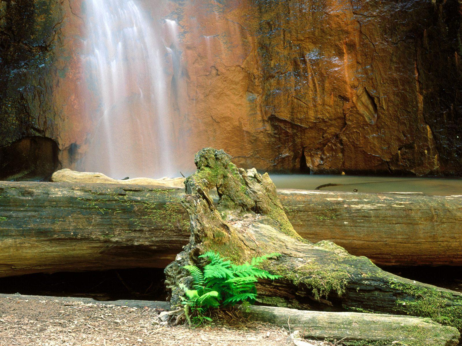 http://1.bp.blogspot.com/-jHEZiVIKAoQ/UD_YgOEqVhI/AAAAAAAAAFo/YLFI2RaaWBE/s1600/Nature+Landscapes+HD+Wallpapers+(5).jpg