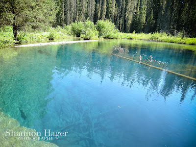 Shannon Hager Photography, Little Crater Lake, Oregon Camping