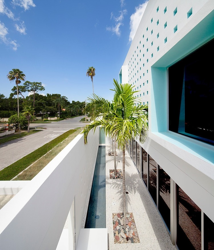 Palm trees from Spencer House by Guy Peterson from Office for Architecture, Florida