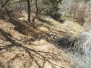 santa fe hiking trails