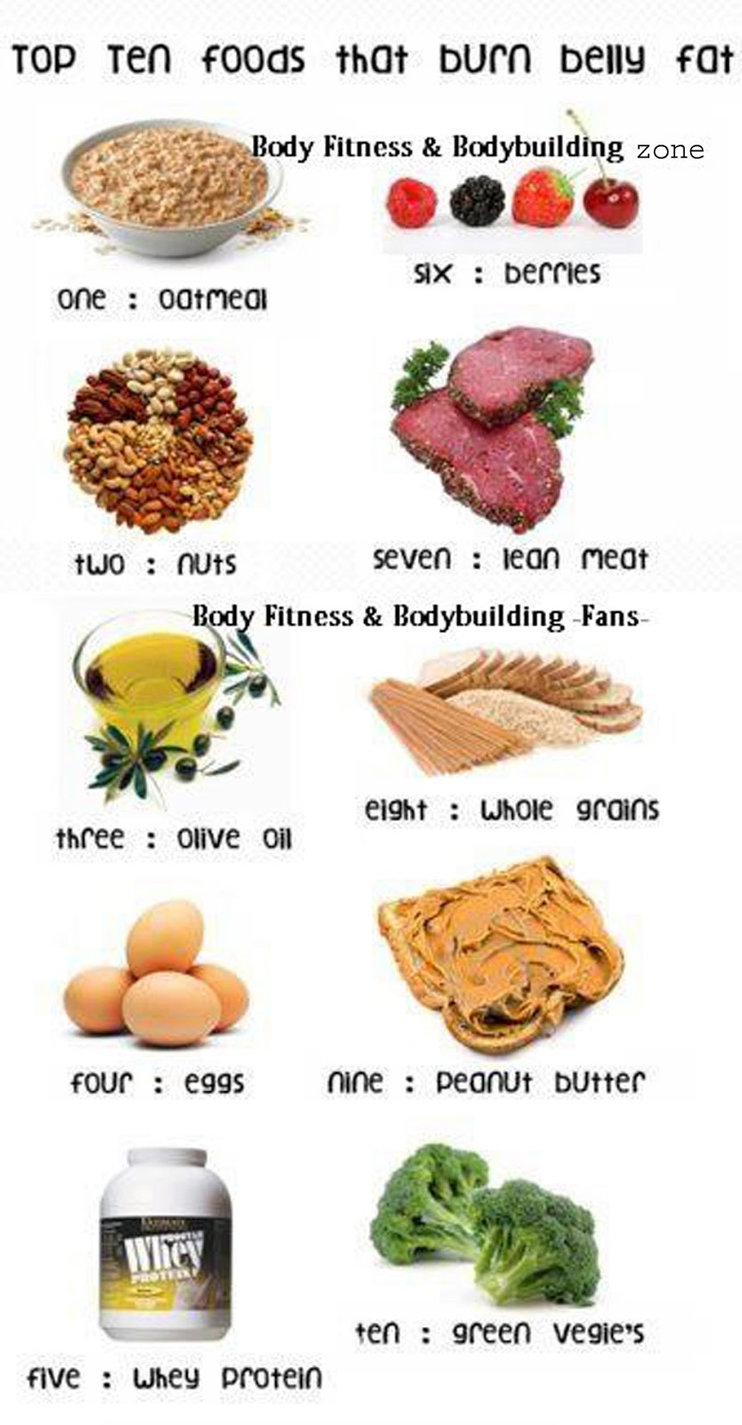 Balanced Diet | Bodybuilding and Fitness Zone