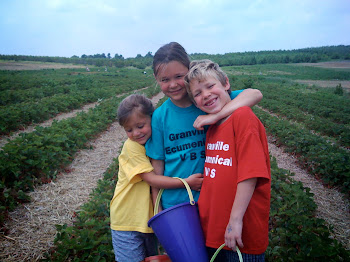 2009 Strawberry Picking