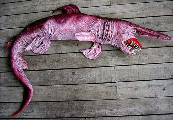 Animals You May Not Have Known Existed - Goblin Shark