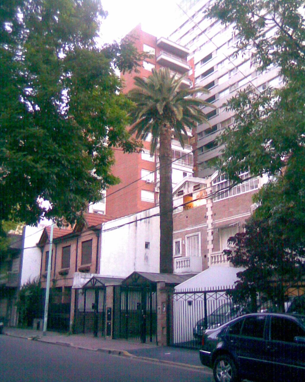 El blog de sirthomas sirpictures la casa de la palmera y - La casa de las palmeras ...