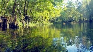 Ichetucknee Springs State Park - Fort White, Florida