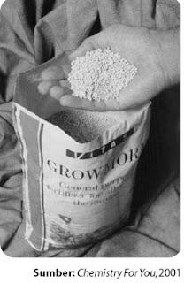 Pupuk nitrogen padat di ubah menjadi pelet sehingga mudah disemprotkan