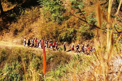 Macoco Et Bacoco 224 La Mayotte Voyage 224 Madagascar Les