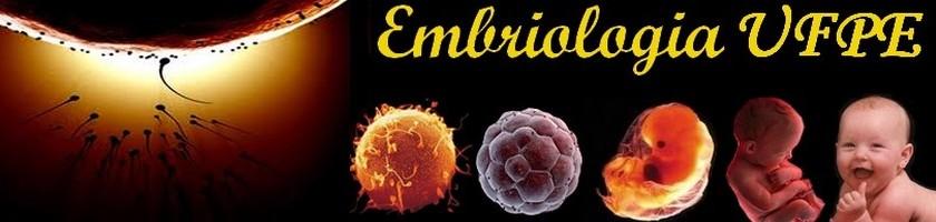 Embriologia UFPE