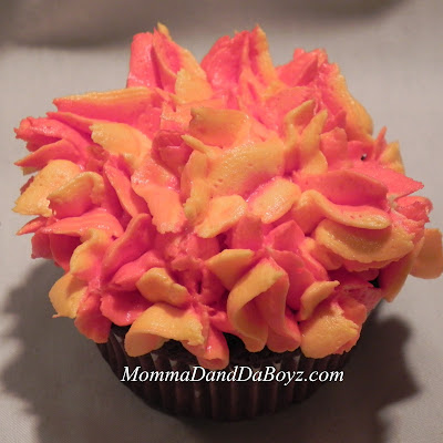 Hunger Games Catching Fire Cupcakes