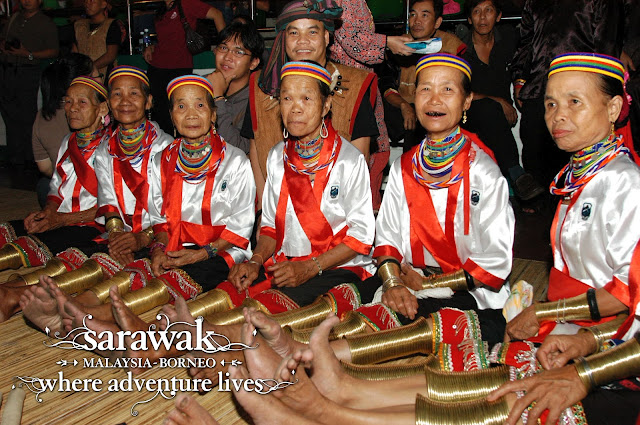 The ladies of Kampung (village) Semban, Padawan with their their ornate brass rings around the lower limbs and forearms.