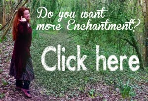 enchantment with jani