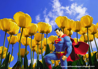 Superman free wallpapers Superman Statue posters Superman in Flowers Tulips Field background