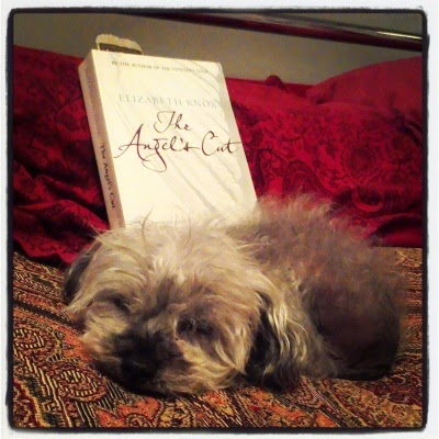 Murchie asleep on a bed beside a paperback copy of The Angel's Cut. The cover features the title against what is presumably a white wing.
