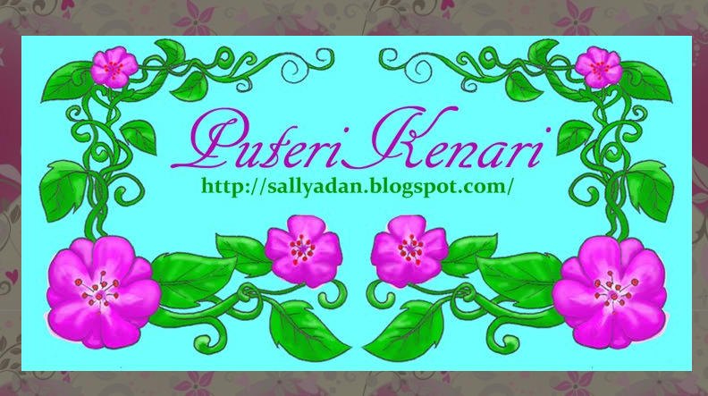 http://sallyadan.blogspot.com/