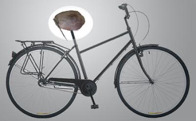 Kisah Sadel Sepeda Buah Kelapa