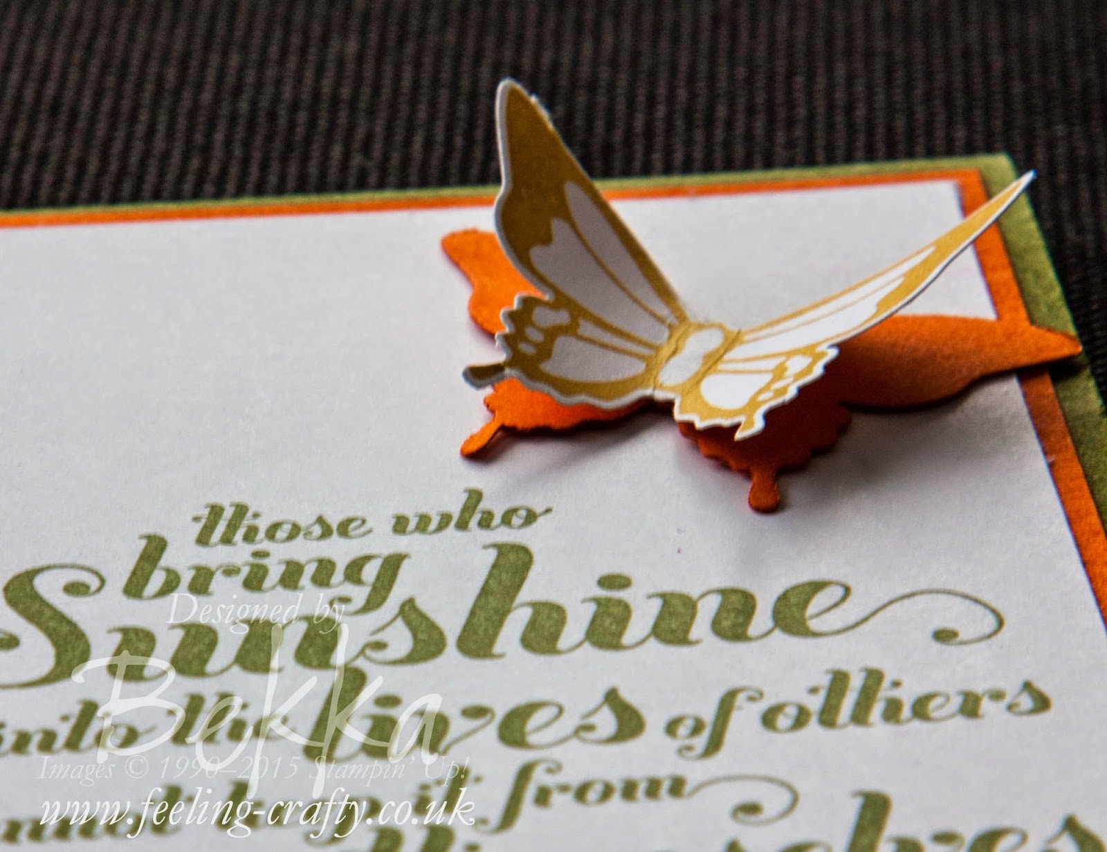 Gorgeous Butterfly from the Nature's Perfection Stamp Set - find out how to get yours here