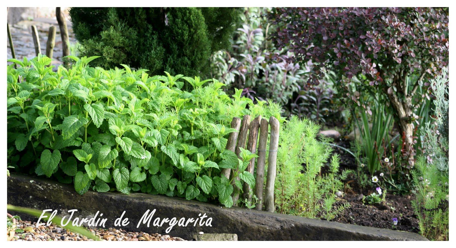 El placer de los sentidos - El jardin de los sentidos ...