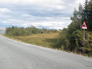 längs norska vägar