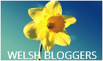 Welsh blogger
