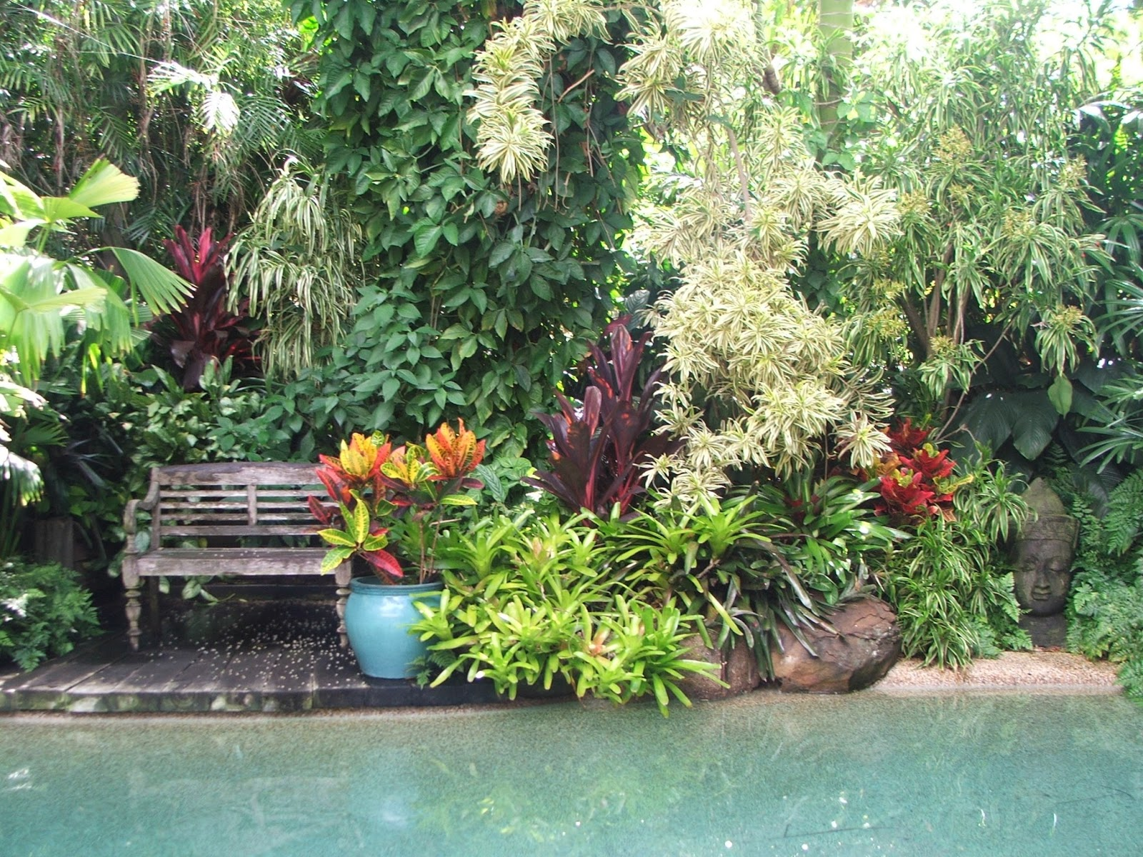Onslow and miss b tropical paradise for Garden pool dennis mcclung
