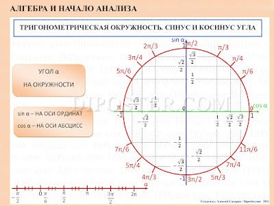 Тригонометрическая окружность. Синус и Косинуc. Плакат по Алгебре и Началам Анализа