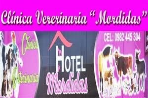 """CLÍNICA """"MORDIDAS"""""""