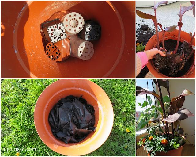 дренаж, контейнер, посадка растений, старые цветочные горшки, горшочки, аленин сад