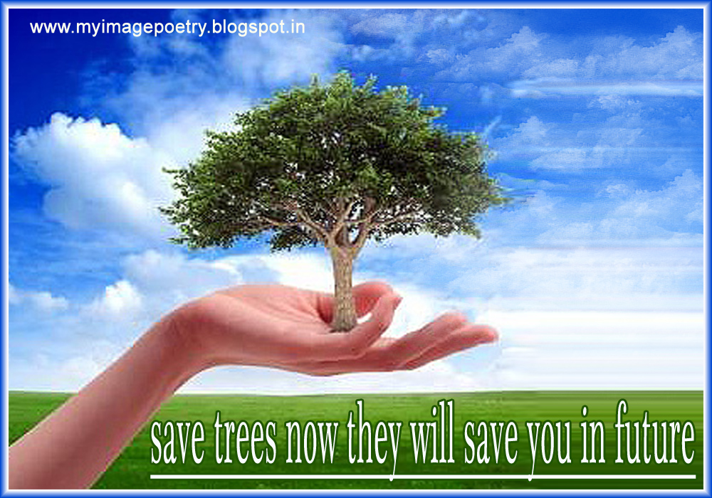 save trees essay india Save trees for the environment trees are the lungs of the earth: it is very important to protect them trees are the lungs of the earth: it is very important to protect them it is for this reason that we say: 'save trees and save the earth.