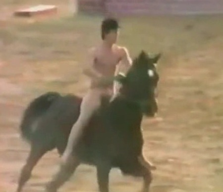 Naked Man Rides A Horse For Few Minutes There S Really Nothing Much