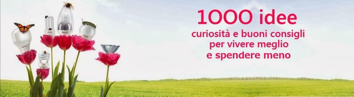 1000 IDEE