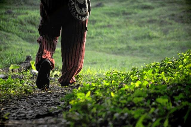 andarilho caminhando