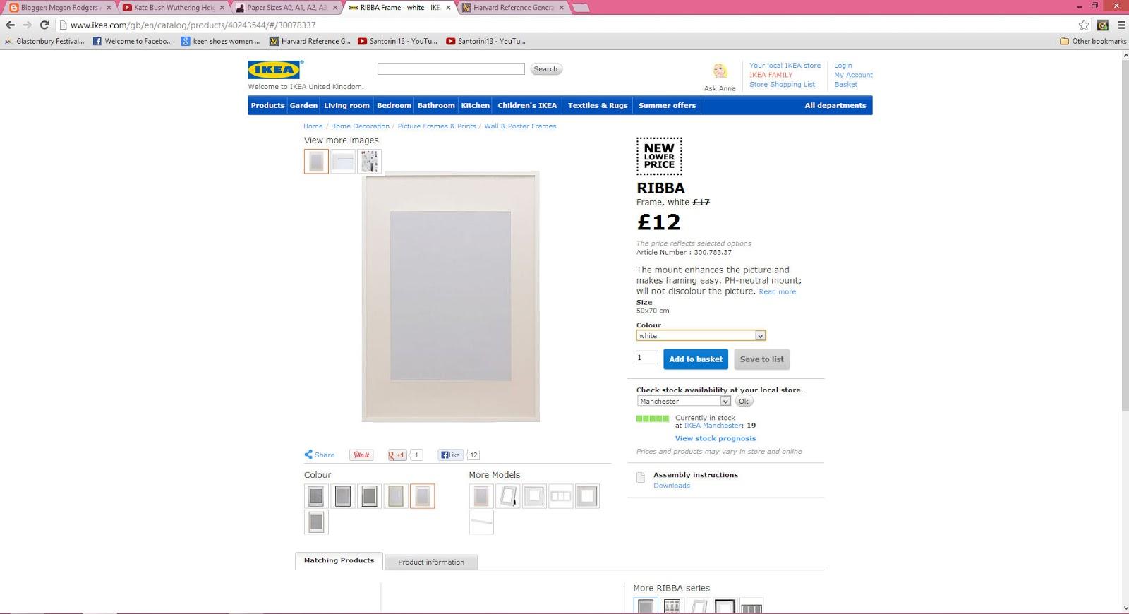 Megan Rodgers Art Blog: IKEA RIBBA Frames series
