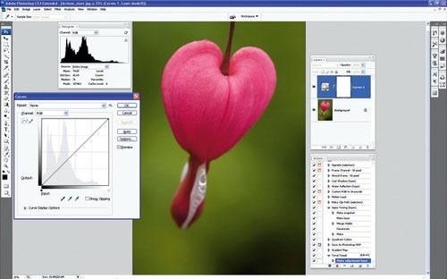 Thiết lập Photoshop Action xử lý ảnh hàng loạt 4