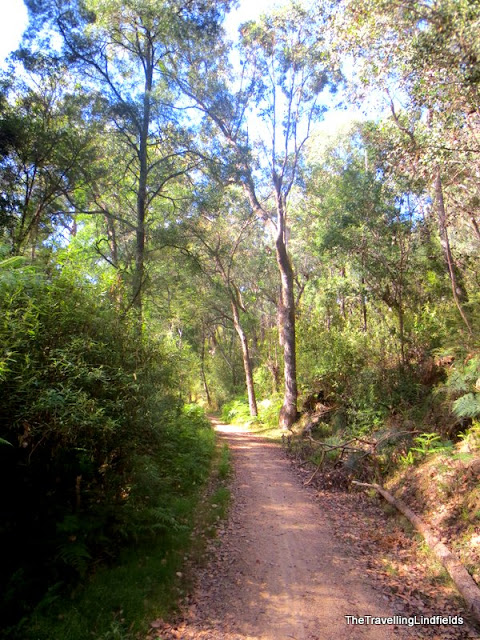 The Gippsland Lakes Discovery Trail