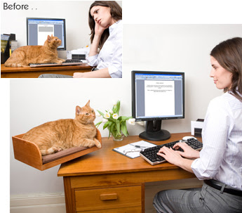 Gato amarelo descansa na cama para felinos, acoplada à mesa do computador
