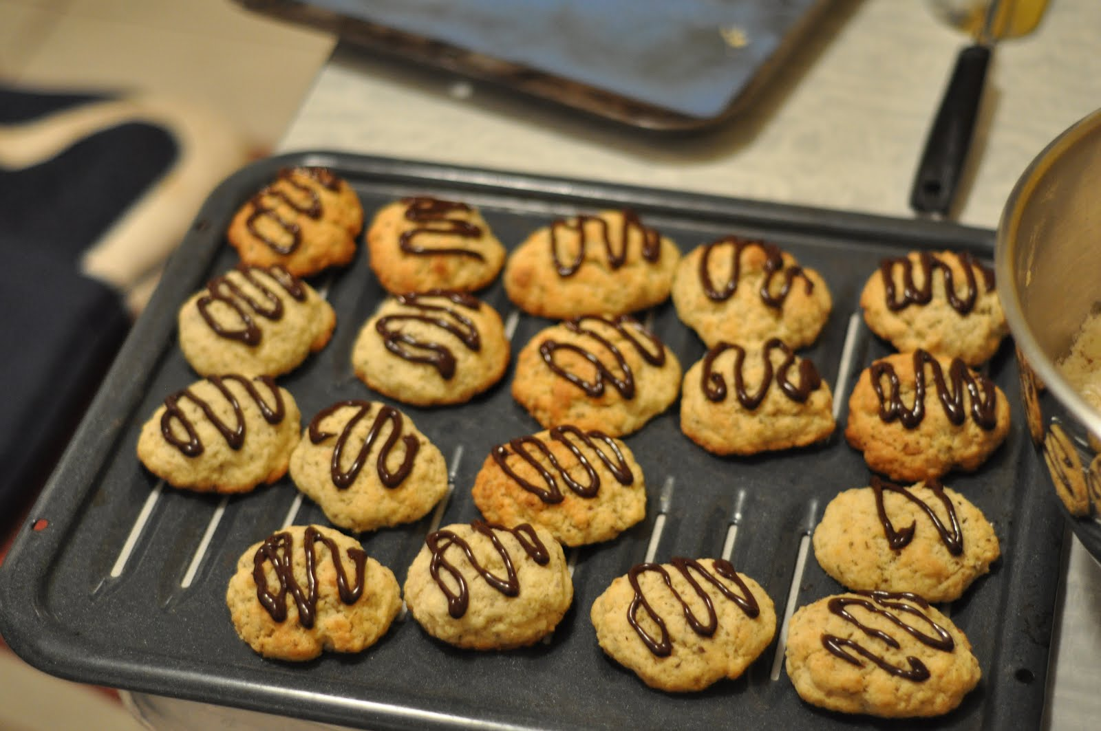 The egyptian kitchen dessert anise cookies the egyptian kitchen forumfinder Images