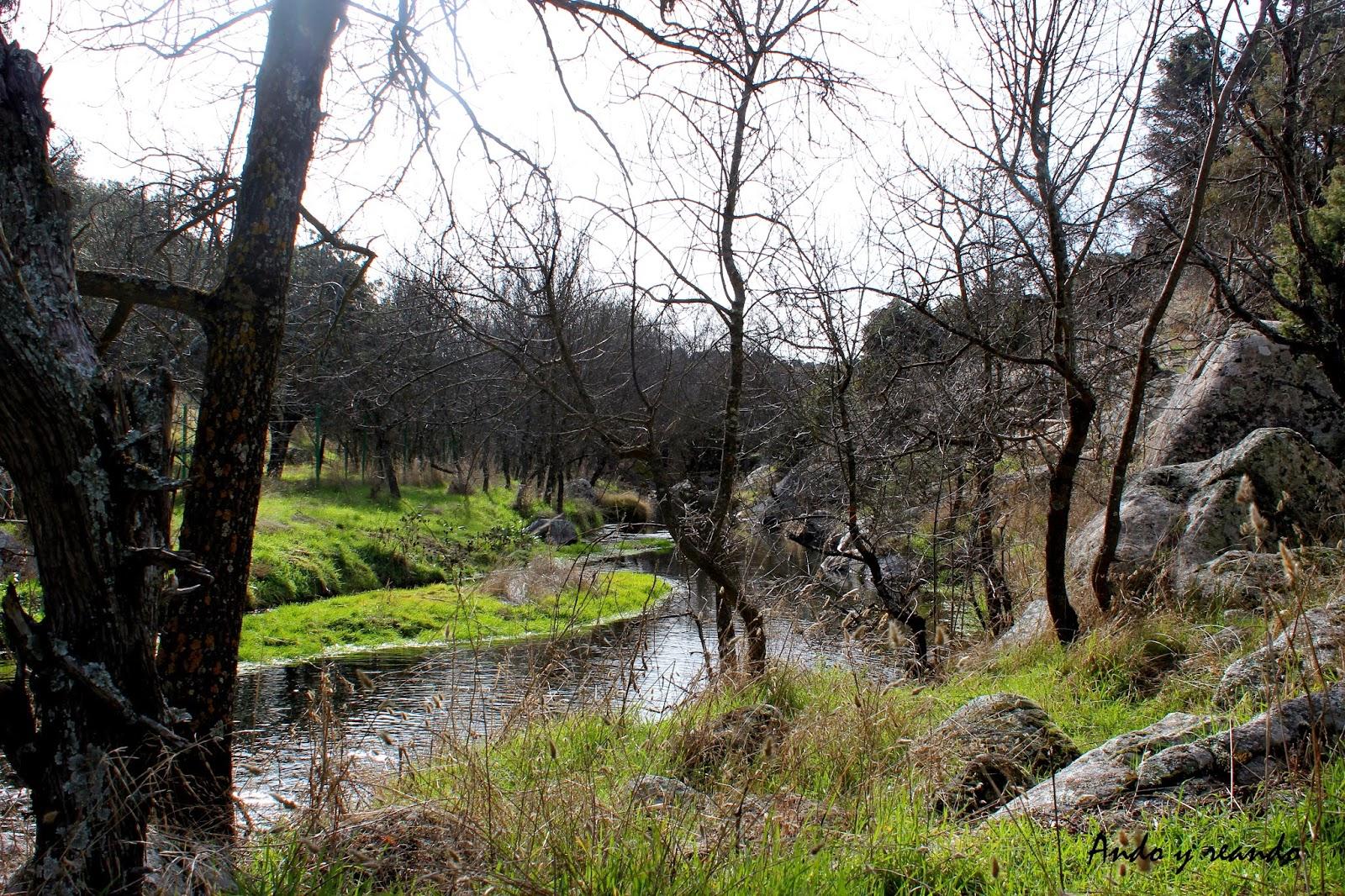río Perales