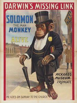 MonkeyWealthy.jpg