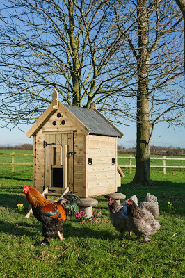 Chickens in front of their Granary Hen House