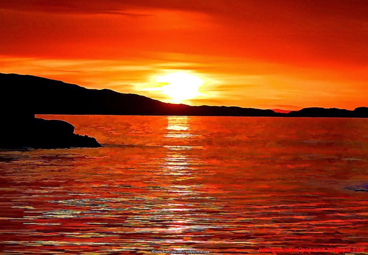 Beautiful Ocean Sunset Dolphins - Hot Girls Wallpaper