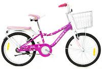 City Bike Wimcycle Mini Zilla 20 Inci